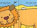 thats-not-my-lion1