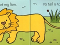 thats-not-my-lion3