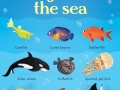 199-things-under-the-sea