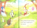 the hare and the tortoise1