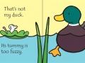 tnm duck2