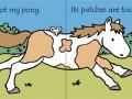 tnm pony1
