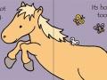 tnm pony2
