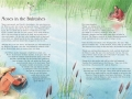 illustrated-childrens-bible-2013.jp3