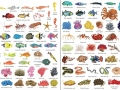1000 things under the sea1