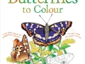 butterflies to colour