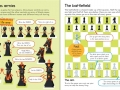 chess book2