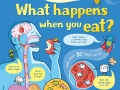 li-what-happens-when-you-eat