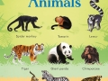 9781474936927-199-zoo-animals