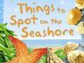 things-to-spot-on-seashore