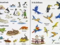 first sticker book zoo4