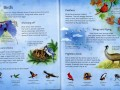 childrens-picture-atlas-of-animals3