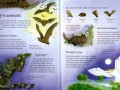 childrens-picture-atlas-of-animals4