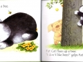 fat_cat_may_other_tales_phonics_stories2