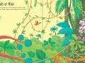 jungle-sb1