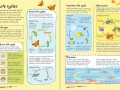 junior-illustrated-science-dictionary1