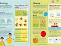 junior-illustrated-science-dictionary3