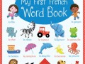 9781409593577-first-french-word-book