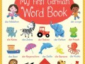 9781409597629-first-german-word-book