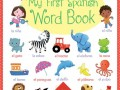 9781409597636-first-spanish-word-book