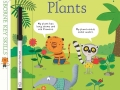 wc-finding-out-about-plants