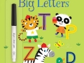 Early-years-Big-Letters