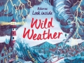 look-inside-wild-weather