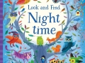 look-and-find-night-time