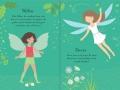 little sdd fairy1