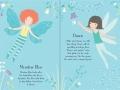 little sdd fairy2