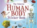 human body sb