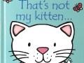 tnm-kitten