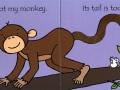 tnm-monkey1