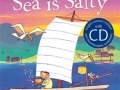 why-the-sea-is-salty-with-cd